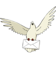 pigeon with letter vector image vector image