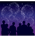 people watching fireworks vector image