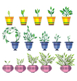 Spring Flowers In Pots vector image vector image