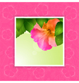 Hibiscus flower border on pink vector image