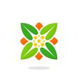 leaf square ecology herbal logo vector image vector image