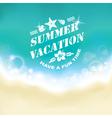 Summer marine background vector image