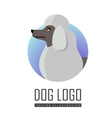 Dog Logo of White Standard Poodle Isolated vector image