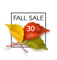 fall sale poster with a bouquet of leaves vector image