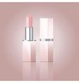 pink lipstick vector image