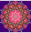 Background circular ornaments of precious vector image