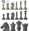 Chess piece set vector