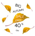 big autumn sale background vector image