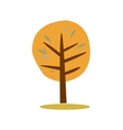 Simple of autumn tree vector image vector image