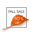 fall sale 50 percent off vector image