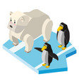 polar bears and penguins in 3d design vector image