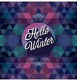 hipster hello winter dark vector image vector image