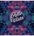 hipster hello winter dark vector image