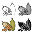 cocoa fruit icon in cartoon style isolated on vector image
