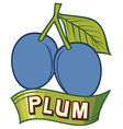 plum label design vector image vector image