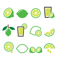 lime - food icons set vector image