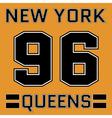 t-shirt New York vector image