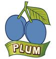 plum label design vector image
