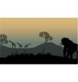 Silhouette of gorilla and giraffe vector image