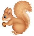 Squirrel cartoon holding nut vector image
