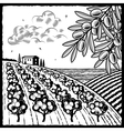 Landscape with olive grove black and white vector image vector image
