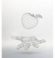 Apple on the hand The hand holding a Apple vector image