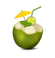 Cocktail in coconut vector image