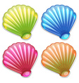 Colourful shells vector image