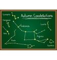 Autumn Constellations on chalkboard vector image