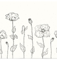 Floral background Hand drawn Poppies vector image