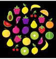 fresh tasty fruit circle isolated on black vector image