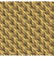 herringbone texture vector image