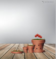 Red flower plant clay pot vector image