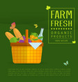 basket with fresh natural vegetables vector image