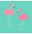 Two pink flamingo set Exotic tropical bird Zoo vector image