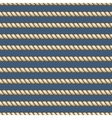Marine ropes striped seamless background vector image