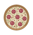 Pizza with mushrooms and salami vector image