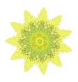 yelow flower vector image
