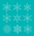 beautiful vintage calligraphic snowflakes set for vector image