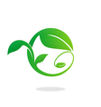 leaf swirl ecology abstract logo vector image