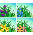 Four scenes of flowers and grass vector image vector image