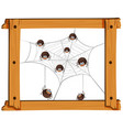 many spiders on the web vector image