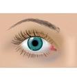 Perfect eye vector image