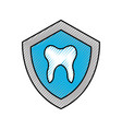 shield with human tooth isolated icon vector image
