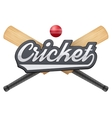 Cricket leather ball and wooden bats vector image