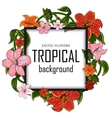 Tropical with place for your text vector image