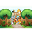 a zoo and animals vector image vector image