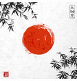 bamboo leaves and red sun vector image