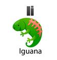 Alphabet I with iguana vector image vector image