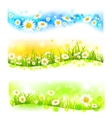 Three bright flower banners vector image